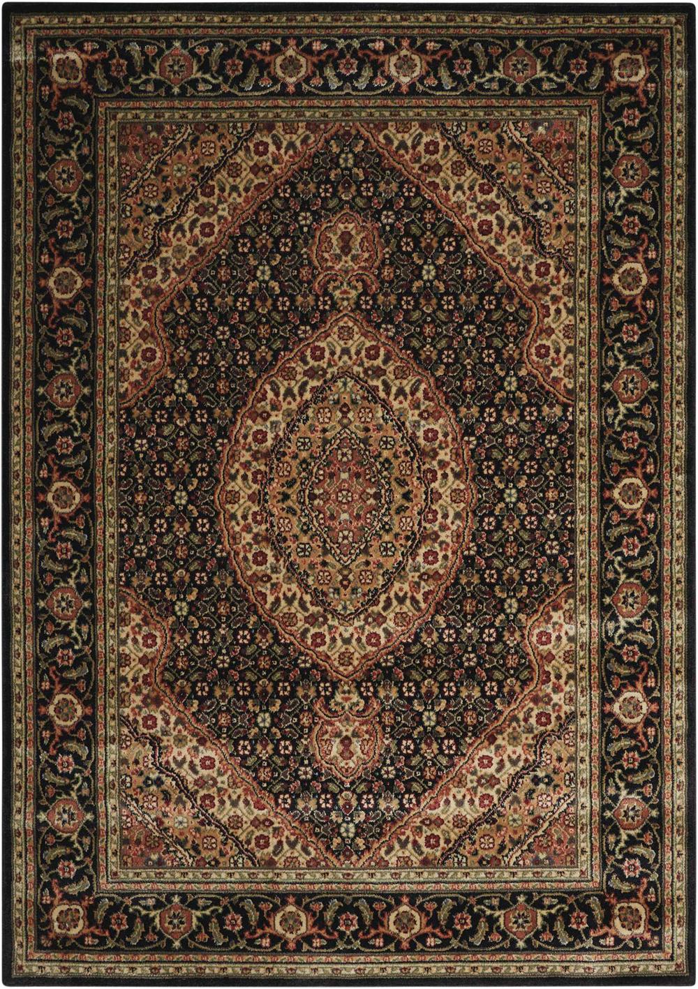 Nourison PERSIAN ARTS BD03 BLACK Rug