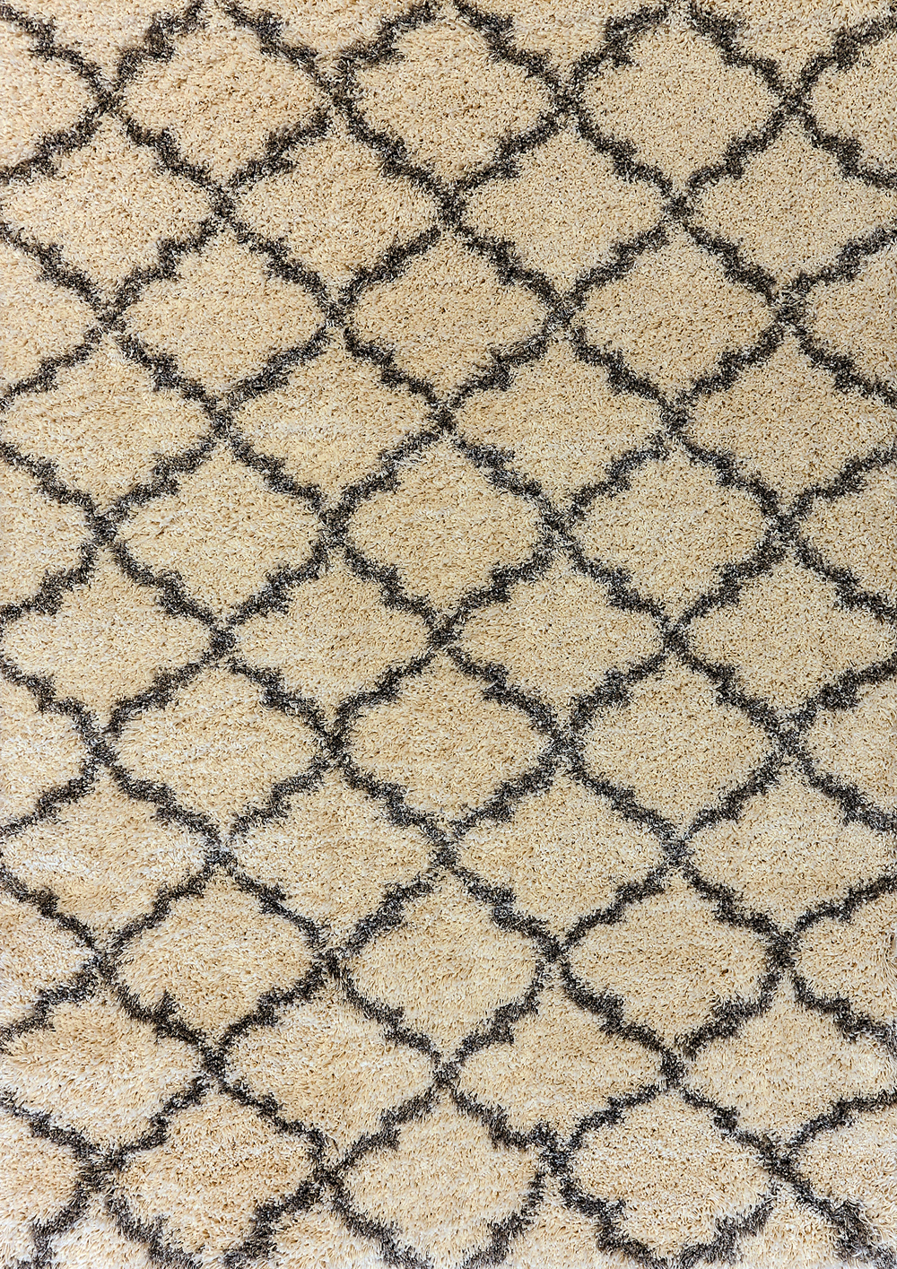 Dynamic CRYSTAL 8520 Cream/Grey Rug